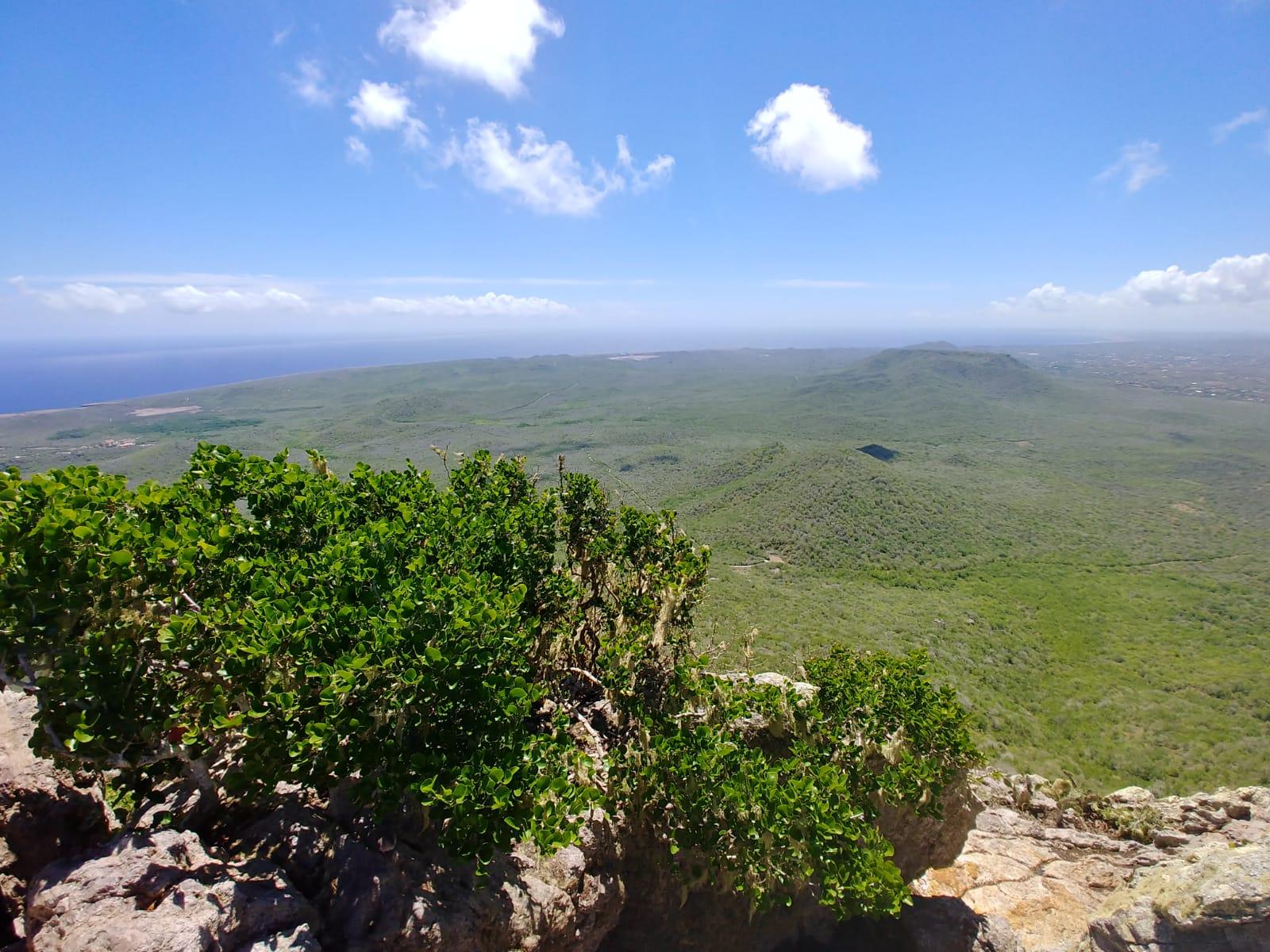 Christoffel Park highest mountain