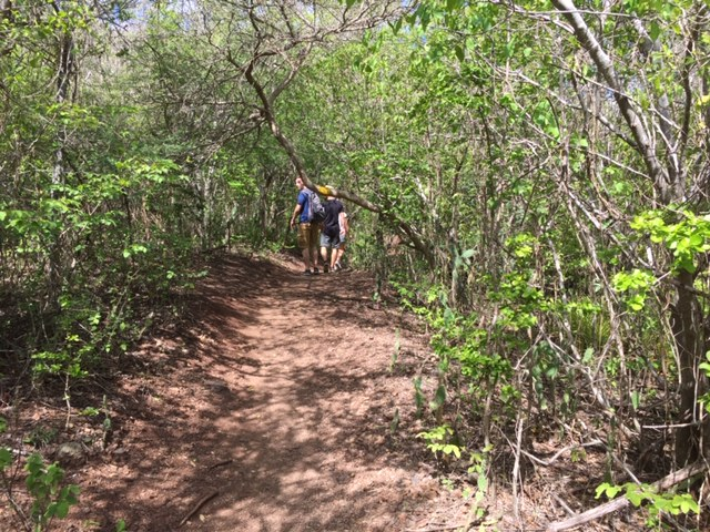 Hike to top Christoffel Mountain