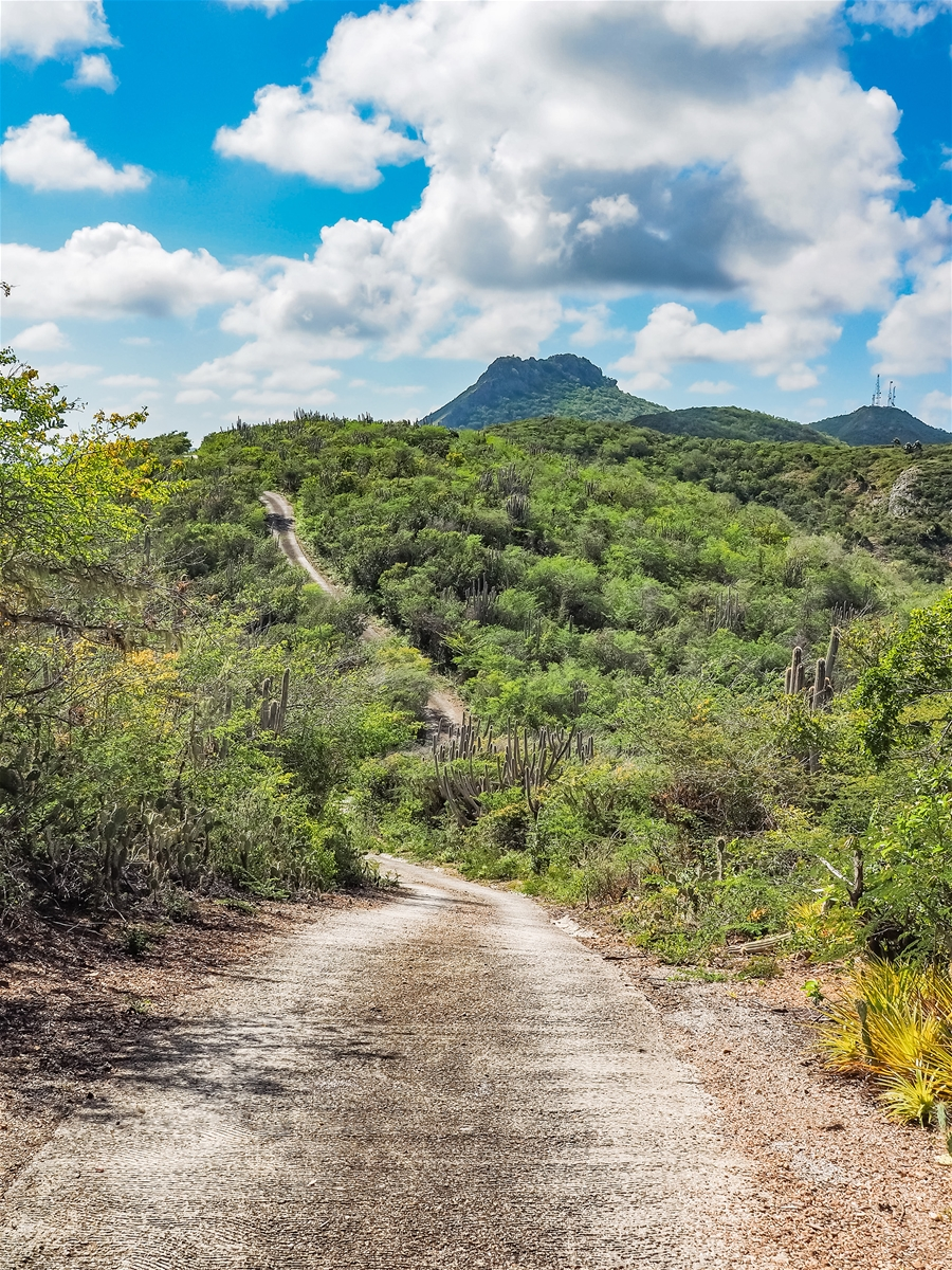 Mount Christoffel Curacao South Caribbean